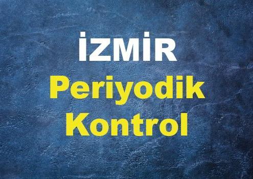 İzmir Periyodik Kontrol